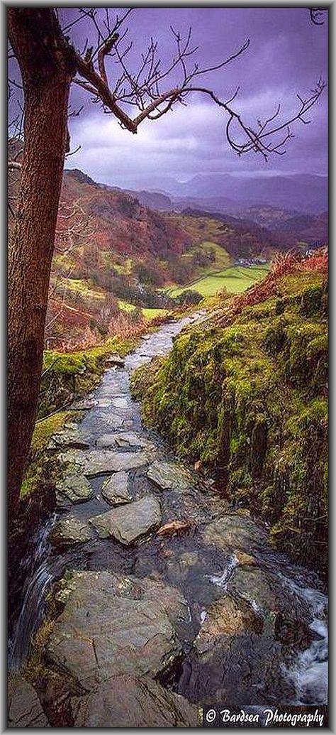 Quintessential Lakeland -- High Yewdale, UK - England, Vereinigtes Königreich #by Bardsea Photography on http://flickr.com