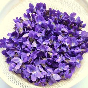 Konfitura z fiołków i fiołki w cukrze #flower #violet #jam