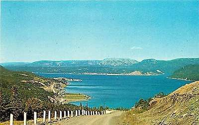 Woody Point Newfoundland Canada 1950s Roadside View Boone Bay Vintage Postcard