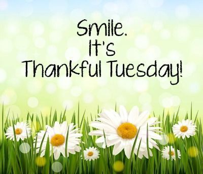 Smile Its Thankful Tuesday good morning tuesday tuesday quotes good morning…