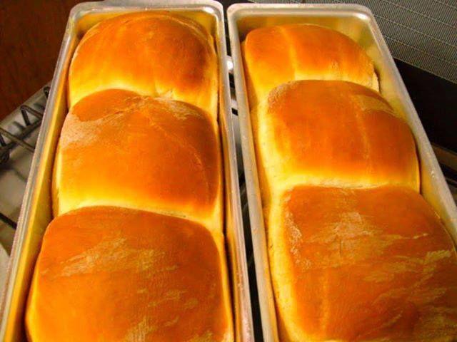 Receitas de Pão de Leite, tudo de gostoso, você só encontra aqui!