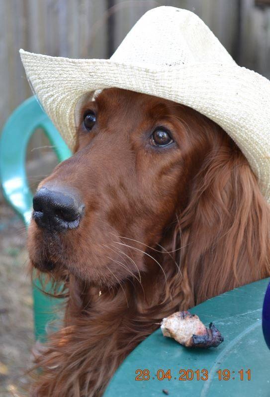 Irish cowgirl lass