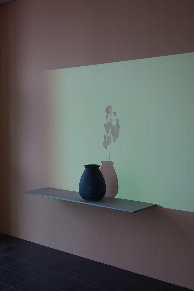 Ursula PALLA Sunflowers 2, 2014 videoinstallation Hambourg, galerie der Gegenwart