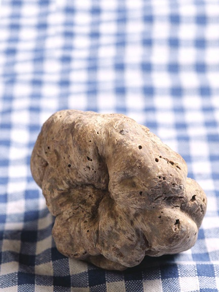 Gourmet Attitude - White Truffle -sure is a bargain at $225 an oz...
