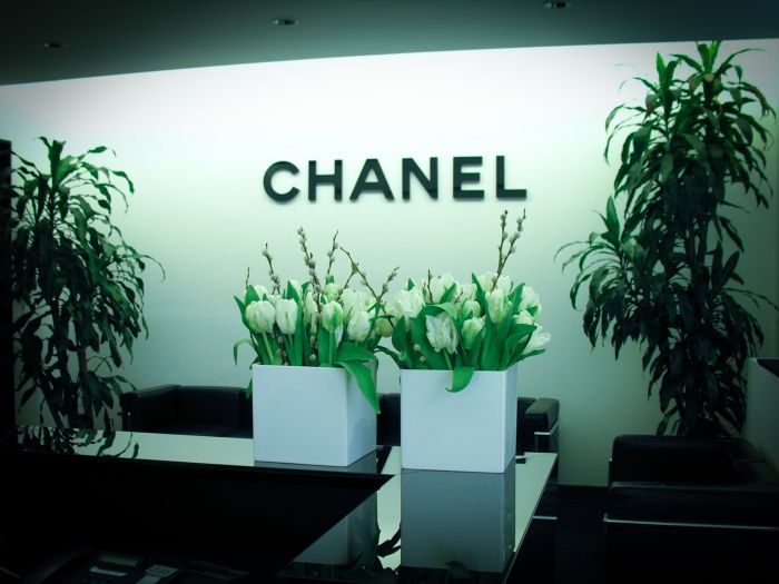 Chanel New Collection