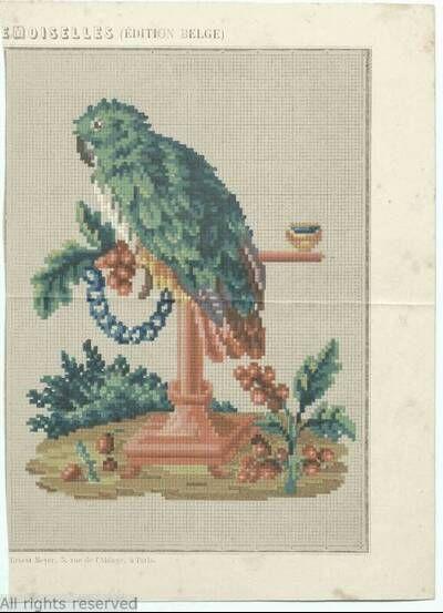 A Rare Berlin WoolWork Parrot Pattern Produced In France ~ Les Journal Des Dames Et Des Demoiselles ~ MoMu