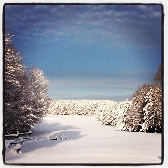 1st tee @ Diamond 'in the Ruff'! Winter in Muskoka is beautiful!