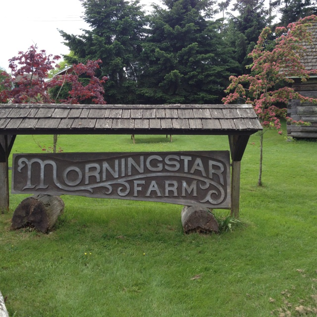 Cheese farm in Qualicum BC Kids love this place, full functioning active cheese farm.