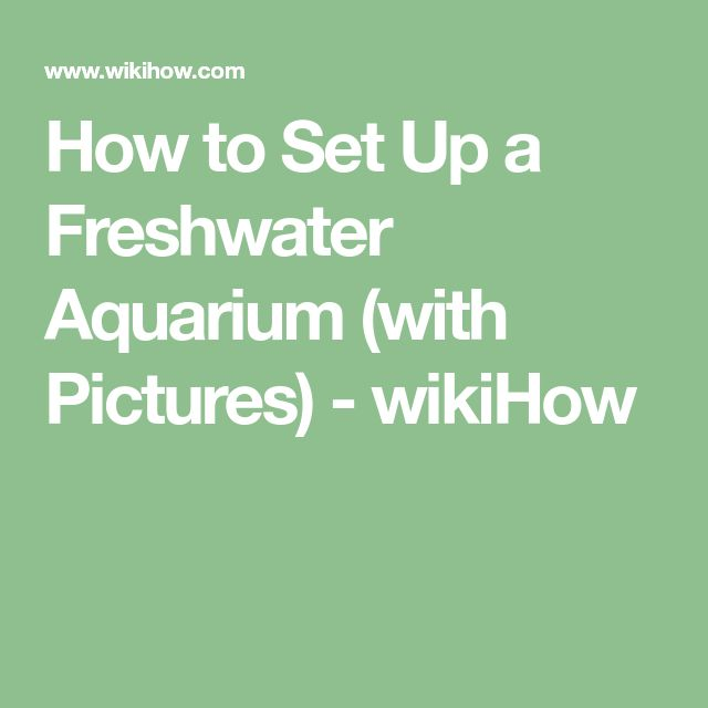 How to Set Up a Freshwater Aquarium (with Pictures) - wikiHow