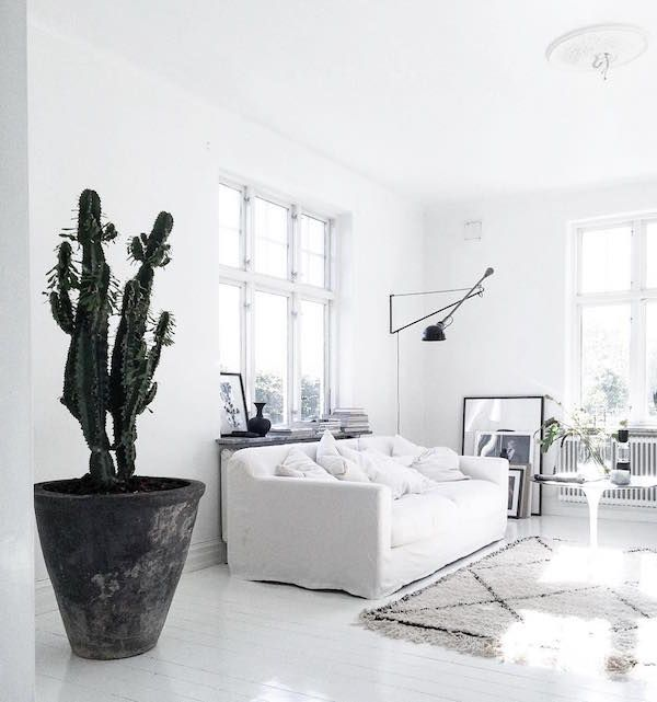 Idea To Steal: Go Crazy For Catci (Apartment 34). All White RoomWhite Living  ... Part 72