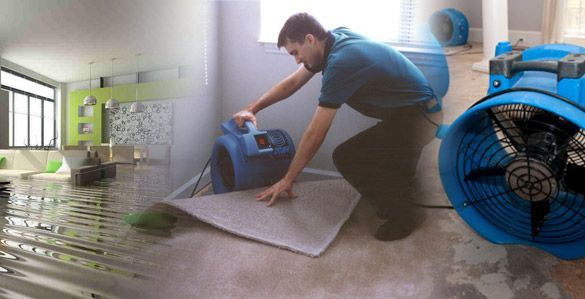 The restoration company to transfer the burden of water damage cleaning and drying and time you must make certain you get help with the installation  #Installation