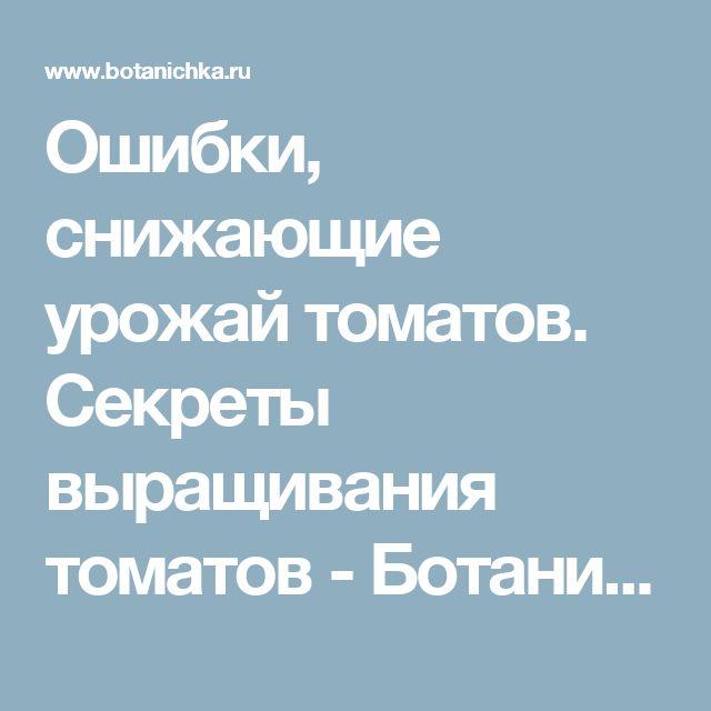 Ошибки, снижающие урожай томатов. Секреты выращивания томатов - Ботаничка.ru