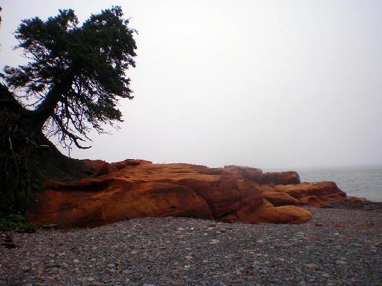 Nova Scotia, Canada: Cape Chignecto, Bay of Fundy