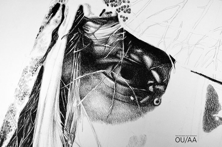 A Glance Of Hope by Oana Unciuleanu For more wonderful drawings and art novelties, visit www.oanaunciuleanu.com and subscribe to Oana Unciuleanu Art & Architecture on FB. #art #arte #artist #artwork #blackandwhite #creative #drawing #fineart #fantasy #graphic #illustration #monochrome #myart #pencil #wallart #artsy #composition #amazing #love #epic #beautiful #cool #fun #picoftheday #visualdiary #myart #masterpiece #inspiration #newartwork #femaleartist #modernart