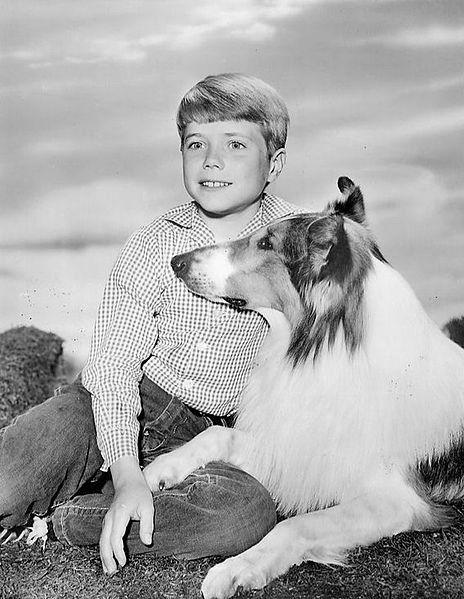 Die TV-Serie Lassie startete bereits 1959 in Deutschland und lief bis in die 1970er.