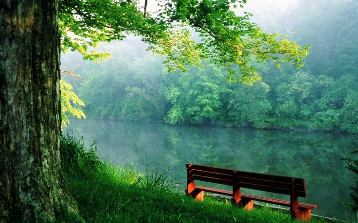 http://brightside.me/article/ten-superb-photographs-to-help-calm-your-soul-13155/