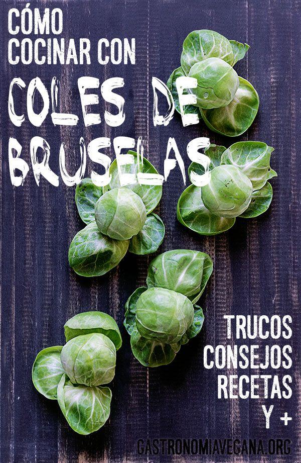 Cocinar con coles de Bruselas: cómo elegirlas, prepararlas, guardarlas y cocinar con ellas. Incluye un montón de recetas!