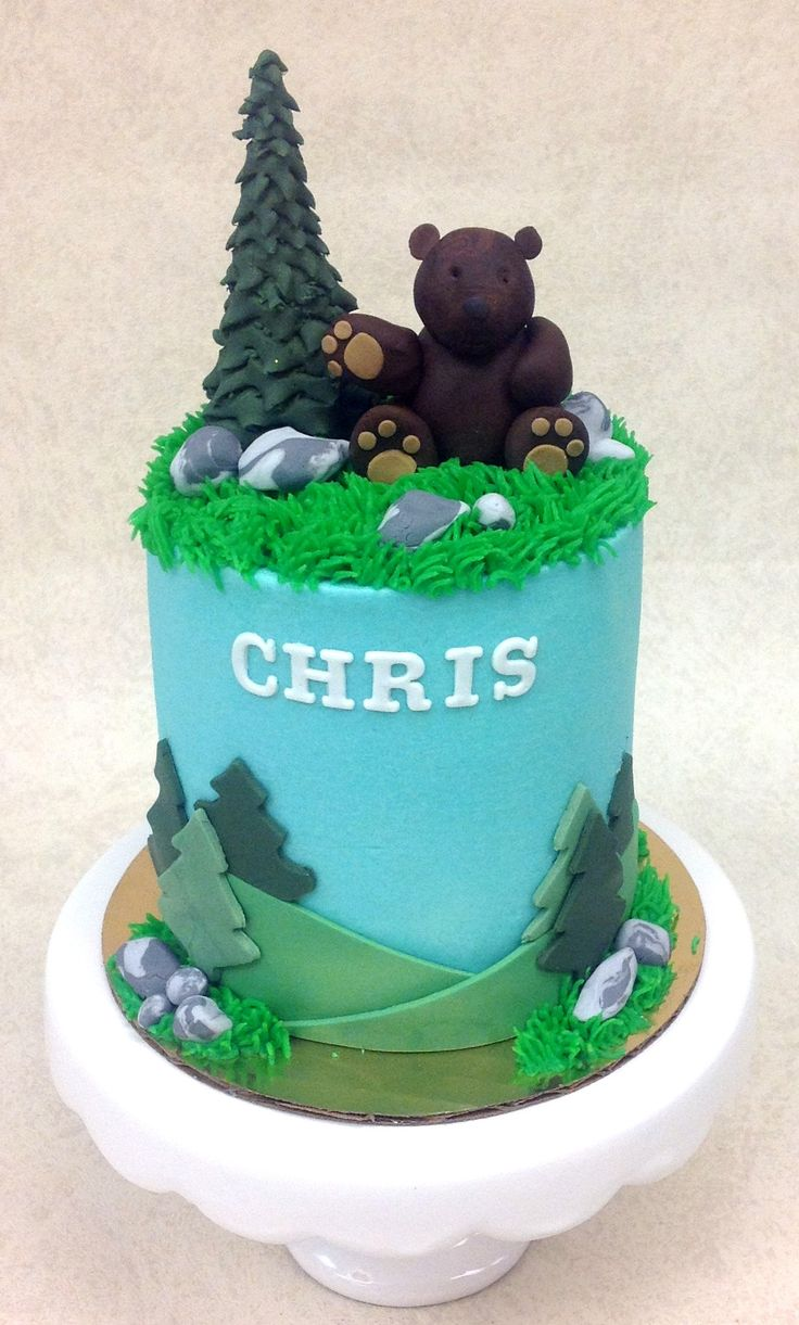 1000 Ideas About Mountain Cake On Pinterest Forest Cake