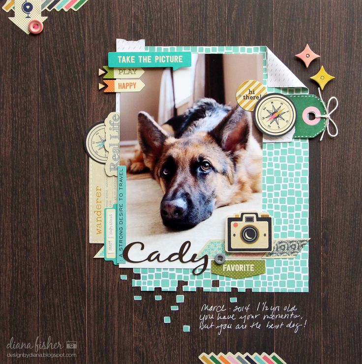 Cady *Scrapbook Circle* - Scrapbook.com  This handmade layout of this adorable dog was made with the As You Wish Collection from Fancy Pants Designs.