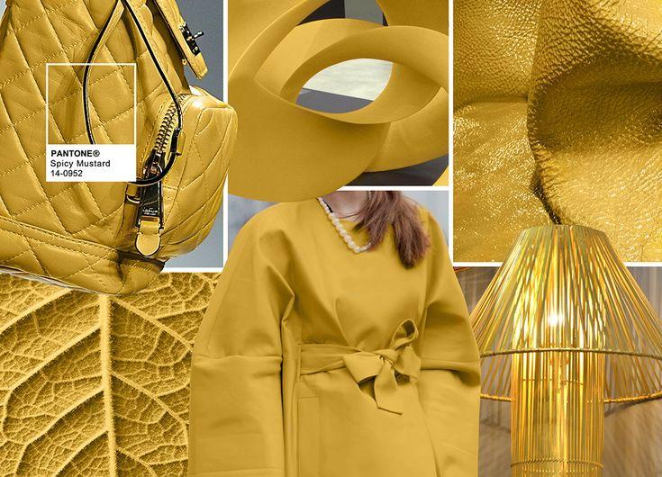 Pantone Fashion Color Report Fall 2016 - PANTONE 14-0952 Spicy Mustard