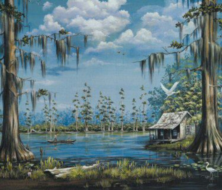 Louisiana swamp !!! Love it !!!