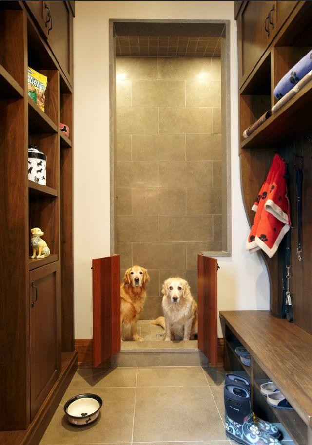 11 best Haustier duschen images on Pinterest   Cutest animals, Dog ...