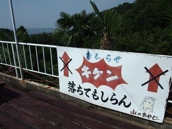 大阪府富田林市/「城山オレンヂ園」の看板。