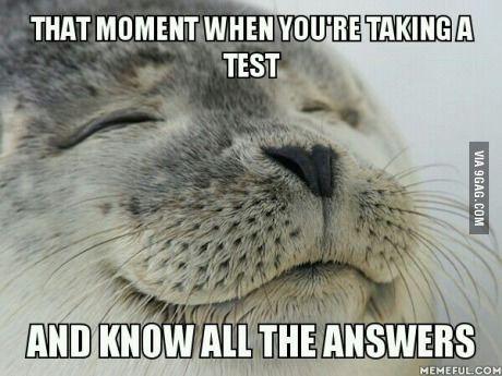 It's the best feeling in the world