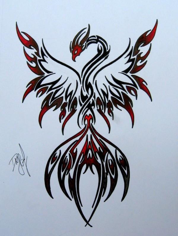 phoenix tribal tattoos for women | Motive Tattoo Galleries: Phoenix Tattoo Design
