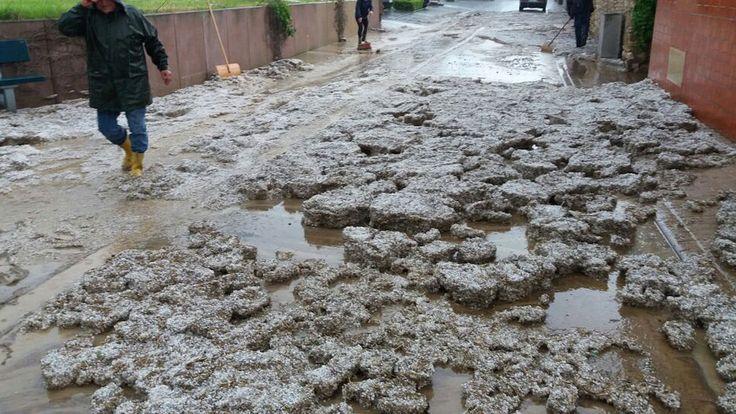 Ein schweres Unwetter über Rheinhessen hat am Sonntag für zahlreiche überflutete Straßen und stundenlange Rettungseinsätze in der Verbandsgemeinde Alzey-Land geführt. Auch heute sind die Folgen noch spürbar.
