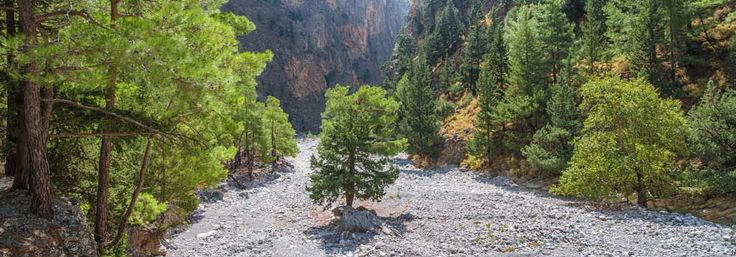 If there was one word that could best describe Cretan nature, it would be wilderness. And this is the beauty of it, as well. Samaria Gorge is perhaps the one thing you should see in Crete, if anything. It is the second longest gorge in...