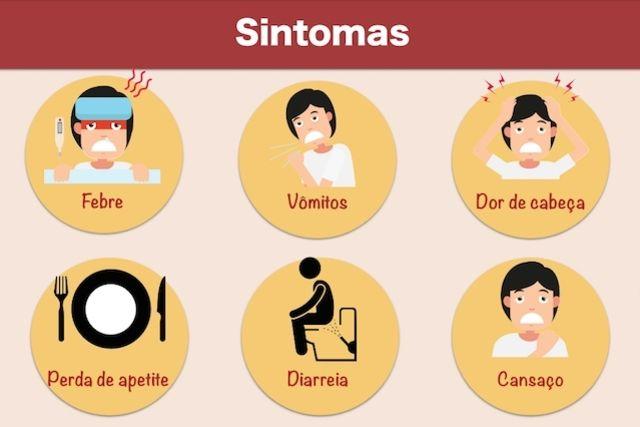 Sintomas de infecção intestinal