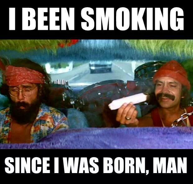 b5989ac5ca21c91dec80064f5a074fe1 cheech and chong funny movies 108 best cheech and chong images on pinterest cheech and chong