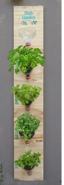 The wall-mounted herb garden is a modification on a previous project and uses recycled materials that were lying around: You will need: Scrap of wood Empty 2-litre plastic bottles Batting Fresh herbs Potting soil Some small screws2 picture hooks 2 concrete nails Hammer Optional: PC printed stencil Craft acrylic Paintbrush