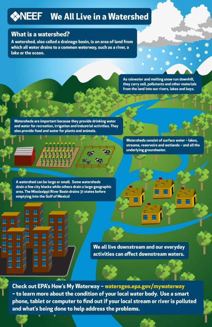 Neef infographic we all live in a watershed eco schools for Soil and water facts