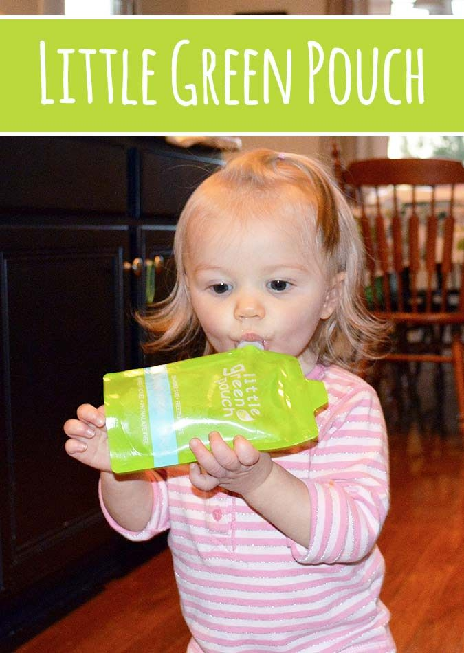 Little Green Pouch Reusable Pouches | Family Gone Healthy