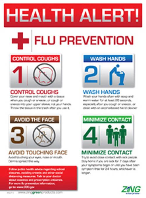How Are Influenza A and B Different?