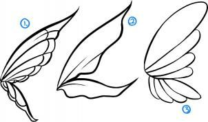 how to draw fairies step 2