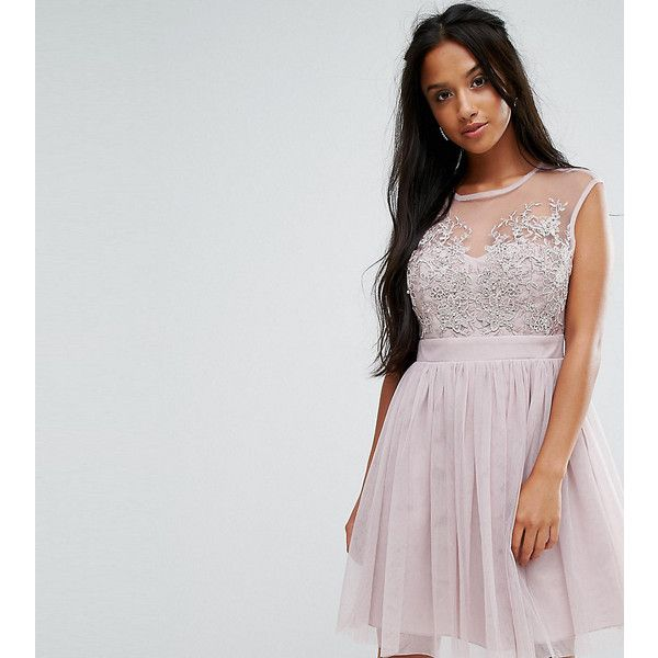 Little Mistress Petite Lace Applique Top Mini Tulle Prom Dress ($115) ❤ liked on Polyvore featuring dresses, brown, petite, lace cocktail dress, tall maxi dresses, party maxi dresses, petite party dresses and maxi dresses