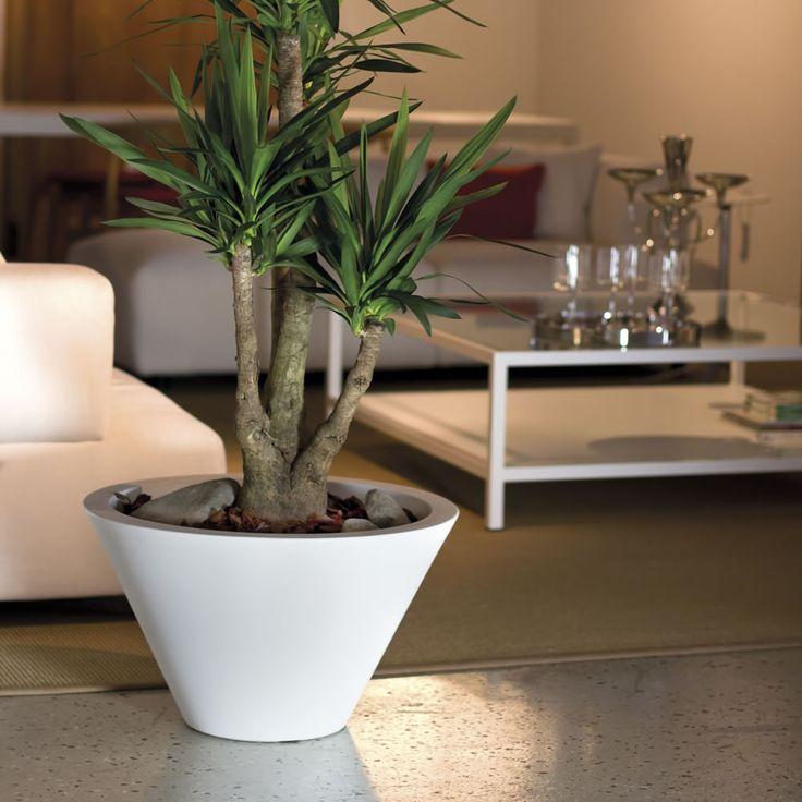 29 best images about vasi per piante on pinterest logos for Vasi nicoli