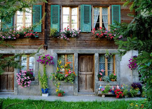 .Flowers create the mood, shutters, lovely