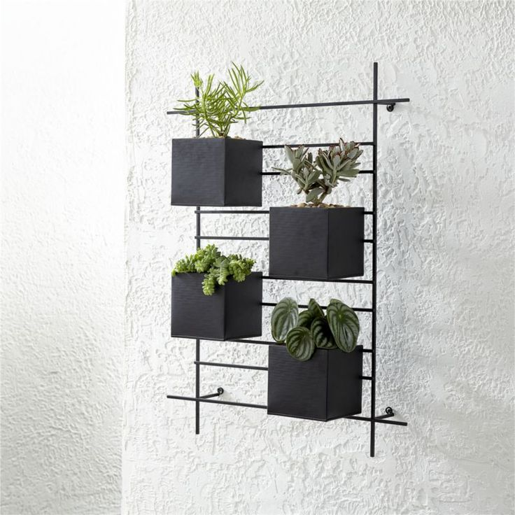 Best 25+ Wall mounted planters ideas on Pinterest | Garden ...