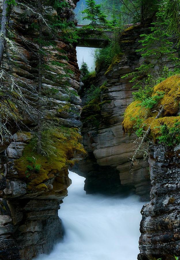 ✮ Athabasca Canyon just below Athabasca Falls - Jasper National Park, Alberta, Canada