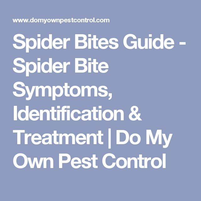 Spider Bites Guide - Spider Bite Symptoms, Identification & Treatment | Do My Own Pest Control