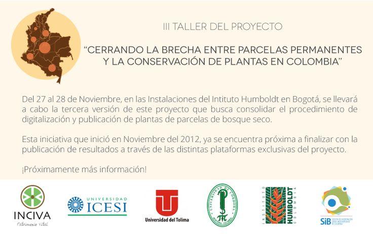 """""""Cerrando la brecha entre parcelas permanentes y la conservación de plantas en Colombia"""""""