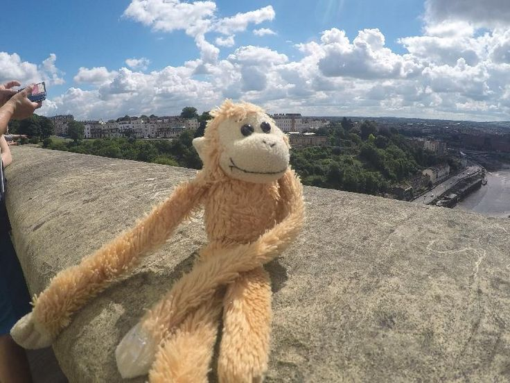 Lost on 14 Aug. 2016 @ Tiergarten / Schlossgarten Schönbrunn Vienna . Little…