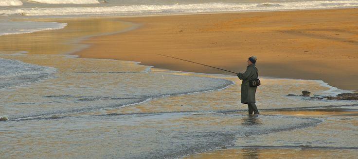 Como pescar lubinas en aguas frías, la pesca de lubina en invierno