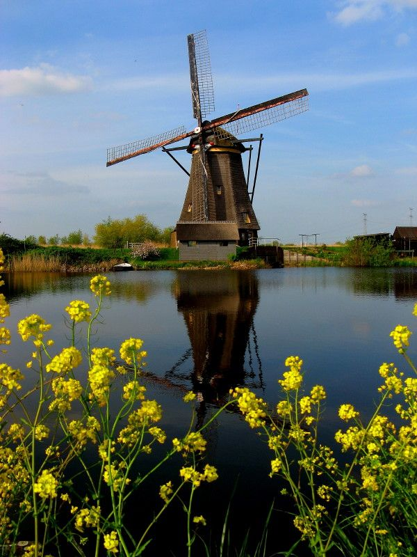 The Netherlands - my windmill-obsessed friend was so jealous of my pics :)