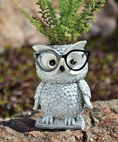 Loving this Owl in Glasses Planter on #zulily! #zulilyfinds