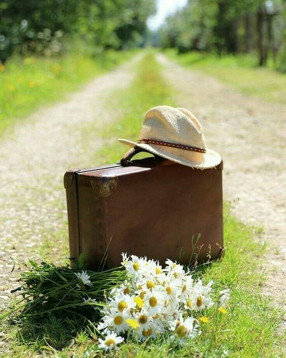 картинки лето шляпа и цветы окончания
